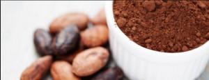 kakao-edivagr
