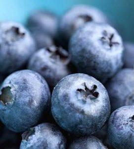 blueberries-nyxia