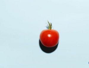 tomatoes in fridge