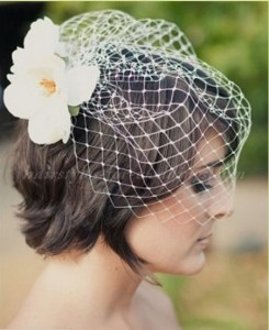 short hair and birdcage veil
