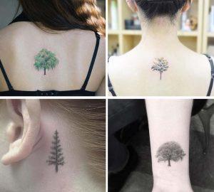 tatouaz fusi