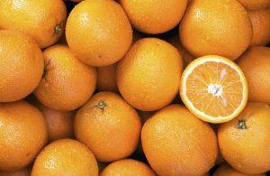 portokalia-frouta-symmaxos-kata-tis-kyttaritidas