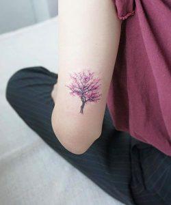 dentro me xrwma tatouaz panw apo ton akgwna