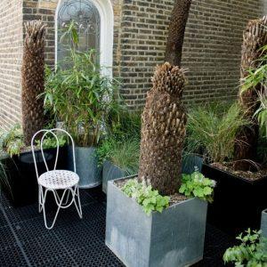 roof garden idees