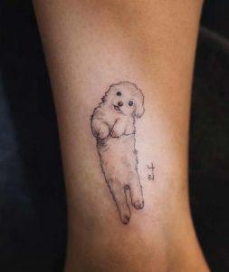 skilaki olokliro tatouaz