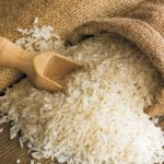 rizi karolina