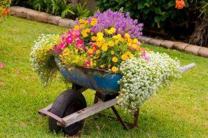 Απλές και φθηνές ιδέες για να διαμορφώσεις τον κήπο σου!