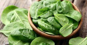 spinach spanaki