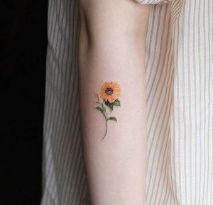 iliotropia tattoo