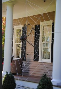 DIY istos arachnis