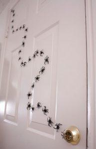 arachnoules kollimenes stin porta