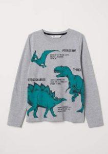 blouza me dinosayro