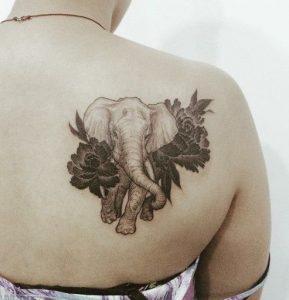 wmos, elefantas louloudia
