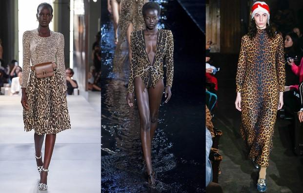 leopard epiloges
