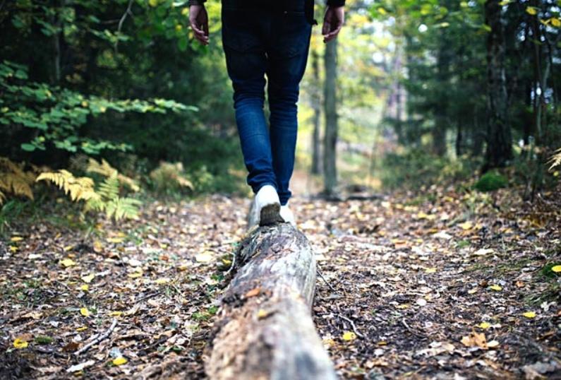άνδρας προχωράει στο δάσος