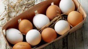 κρόκος αυγών