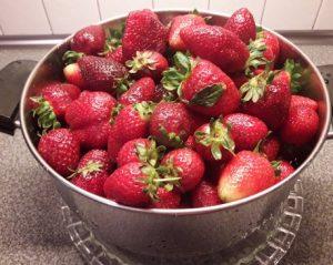 φραουλες πλυμμενες