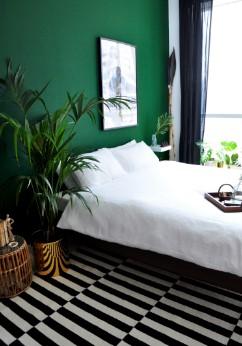πράσινος τοίχος υπνοδωμάτιο κρεβάτι χρώμα χαρακτήρα φυτά