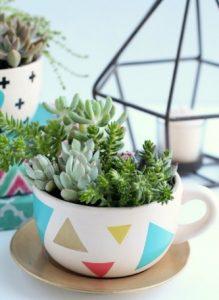 πούχρωμη κούπα φλιτζάνι με φυτά κακτάκια