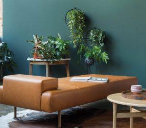 τραπέζι γεμάτο με γλάστρες διακόσμηση τραπεζιού φυτά