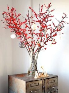 φυτά για Χριστούγεννα γκι