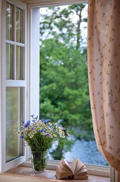 ανοιχτό παράθυρο βάζο με λουλούδια