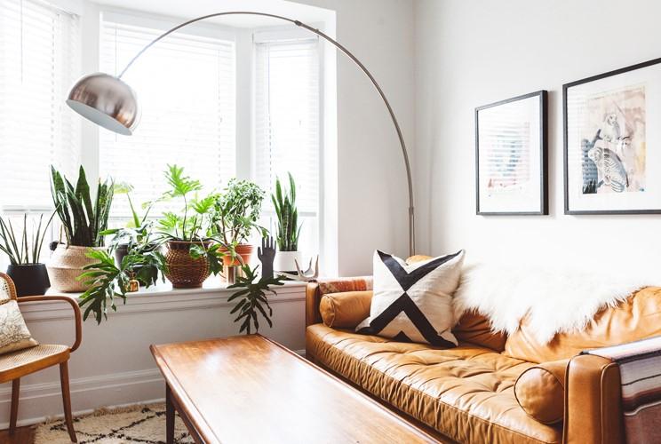 σαλόνι με φυτά στο παράθυρο δερμάτινος καναπές περιμένεις φιλοξενούμενους
