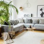 σαλόνι μεγάλη γλάστρα γκρι καναπές διακοσμήσεις σαλόνι τύχη