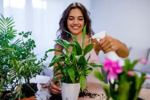 γυναίκα ασχολείται φυτά περάσεις μέρα σπίτι