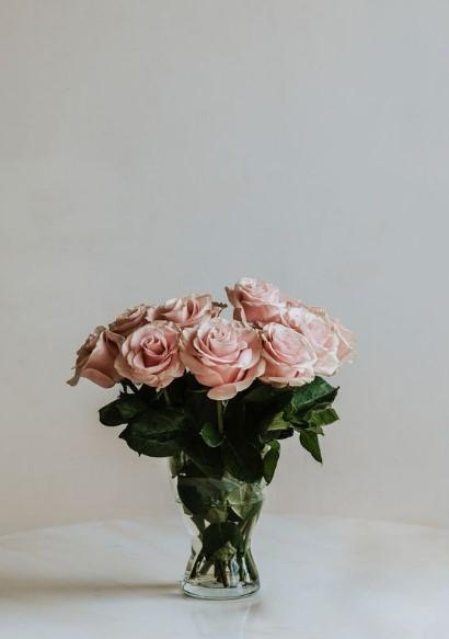 ροζ τριαντάφυλλα βάζο
