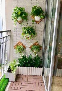 φυτά στο τοίχο της βεράντας