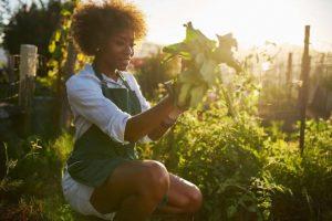 γυναίκα και κηπουρική