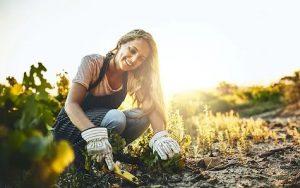 γυναίκα ασχολείται με κηπουρική