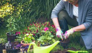 γυναίκα ασχολείται με κήπο