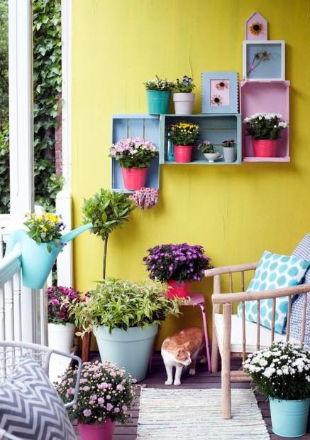 βεράντα λουλούδια κλούβες στον τοίχο φυτά