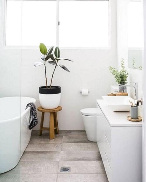 άσπρο μπάνιο γλάστρα φυτό