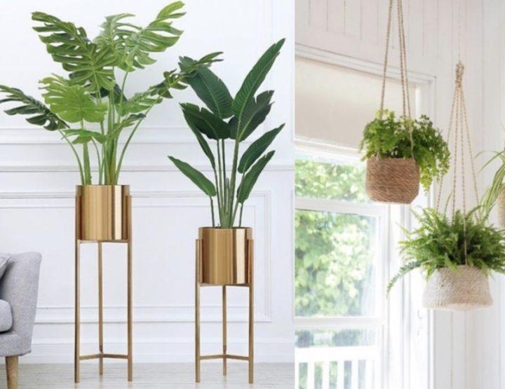 6 Τρόποι να τοποθετήσεις τα φυτά στο σπίτι σου!