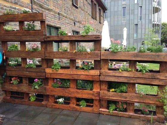 παλέτες φυτεμένα λουλούδια κήπος