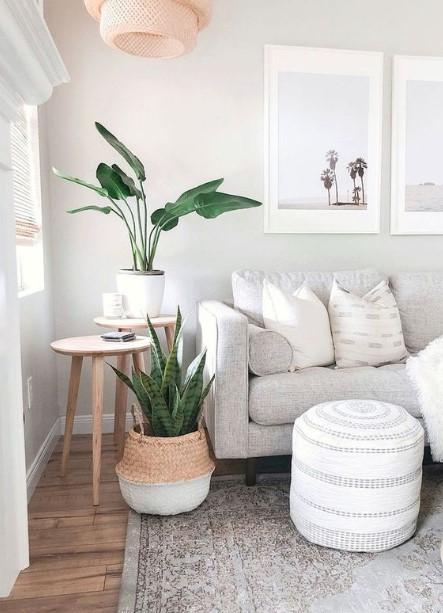 σαλόνι γκρι καναπές φυτά