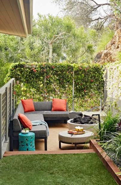 σαλόνι κήπος διαχωριστικό αναρριχώμενο φυτό
