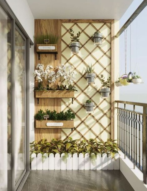 τοίχος μπαλκόνι καλαμωτή φυτά