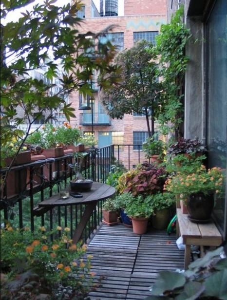 μπαλκόνι γεμάτο φυτά