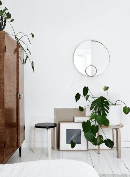 γλάστρα φυτό καθρέπτης κάδρα μοντέρνο σπίτι