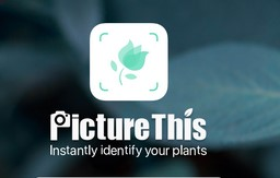 Picture This εφαρμογες φυτων