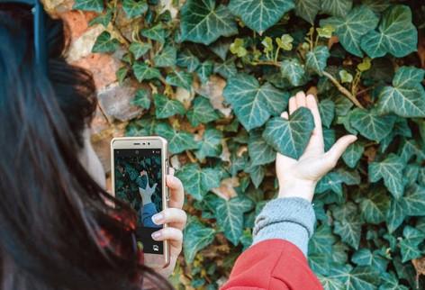 6 Δωρεάν εφαρμογές για φυτά που θα λατρέψεις!