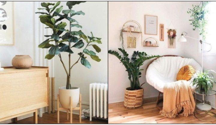 5 Ιδέες για να διακοσμήσεις τις γωνίες στο σαλόνι!
