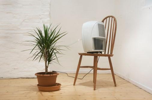 αφυγραντήρας φυτό καρέκλα