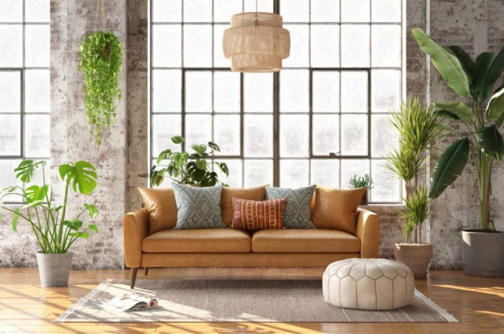 καφέ καναπές δερμάτινο φυτά πουφ