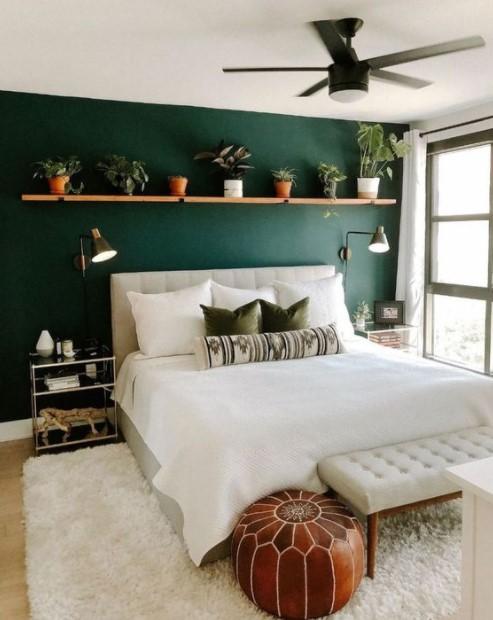 πράσινος τοίχος ράφι φυτά