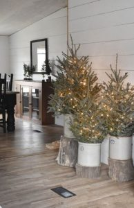 χριστουγεννιάτικα δεντράκια πάνω σε κορμούς δέντρων